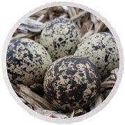 Killdeer Eggs Round Beach Towel