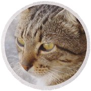 King Cat Round Beach Towel