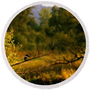 King Fisher Round Beach Towel