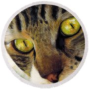 King Of The Cats Round Beach Towel