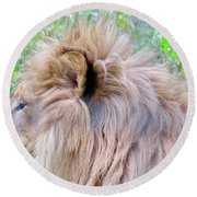 King Of The Jungle Profile  Round Beach Towel
