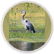 King Of The Marsh Round Beach Towel