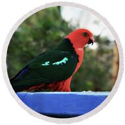 King Of The Parrots Round Beach Towel