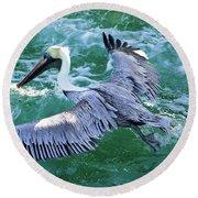 King Pelican Round Beach Towel