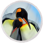 King Penguin Round Beach Towel by Tony Beck