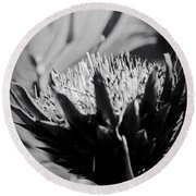 King Protea Exotic Tropical Flowers Round Beach Towel
