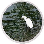 Kingston Jamaica Egret Round Beach Towel