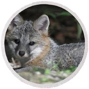 Kit Fox1 Round Beach Towel