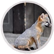 Kit Fox2 Round Beach Towel