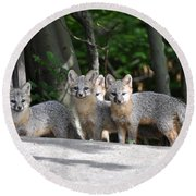 Kit Fox9 Round Beach Towel