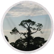Kite In The Tree Round Beach Towel