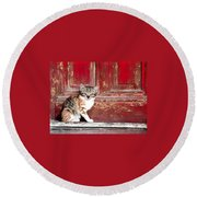 Kitten By Red Door Round Beach Towel