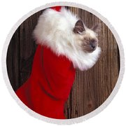 Kitten In Stocking Round Beach Towel by Garry Gay
