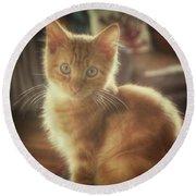 Kitten Portrait Round Beach Towel