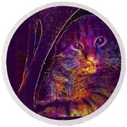 Kitten Red Cat Cat Tom Cat Pets  Round Beach Towel