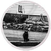 Kitty Across The Street Black And White Round Beach Towel
