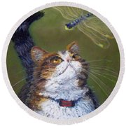 Kitty And The Dragonfly Close-up Round Beach Towel