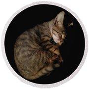 Kitty Cat Curls Up Round Beach Towel