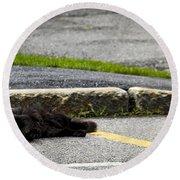 Kitty In The Street Round Beach Towel