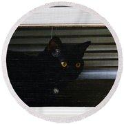 Kitty In The Window 2 Round Beach Towel