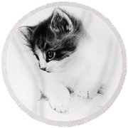 Kitty Round Beach Towel