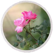 Knock Out Rose Round Beach Towel