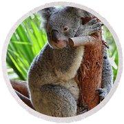 Koala Mama Round Beach Towel