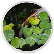 Koi With Lily Pads A Round Beach Towel