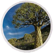 Kokerboom Round Beach Towel
