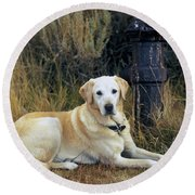 Lab And Fire Hydrant Round Beach Towel