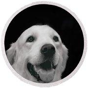 Labrador Smiling B W Round Beach Towel