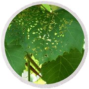 Lace In The Vines Round Beach Towel