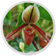 Lady Slipper Round Beach Towel
