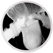 Lady Slipper Orchid Black And White Round Beach Towel