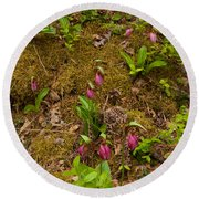 Lady Slippers And Star Flower Round Beach Towel