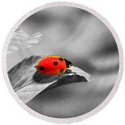 Ladybird Round Beach Towel