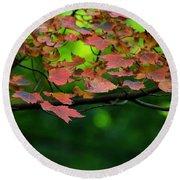 Laid Upon The Branches Round Beach Towel