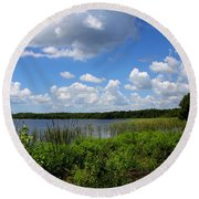 Lake Tarpon Round Beach Towel