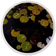 Lake Washington Lilypad 8 Round Beach Towel