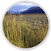 Lamar Valley 2 Round Beach Towel