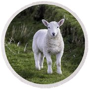Lamb On The Isle Of Skye Round Beach Towel