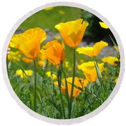 Landscape Poppy Flowers 5 Orange Poppies Hillside Meadow Art Round Beach Towel