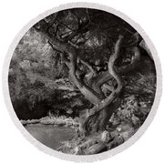 Landscape - The Forbidden Forest Round Beach Towel