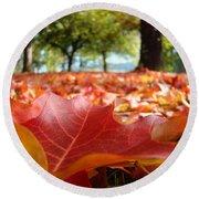 Landscape Trees Park Art Prints Autumn Fall Leaves Baslee Troutman Round Beach Towel