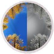 Larches Color To Black And White Reflection Round Beach Towel