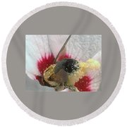 Large Bumble Bee In Flower Round Beach Towel
