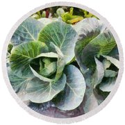 Large Leaves Of A Cabbage Plant Round Beach Towel