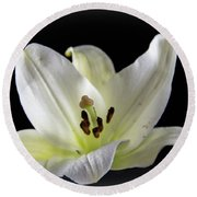 Large Lily-1 Round Beach Towel