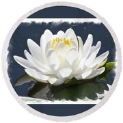 Large Water Lily With White Border Round Beach Towel