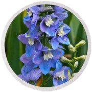 Larkspur And Lady Friend Round Beach Towel